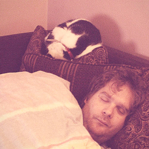 photo credit: Cat Naps via photopin (license)