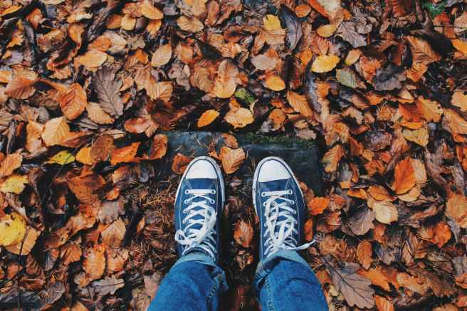 picture of person's shoes in the fall leaves