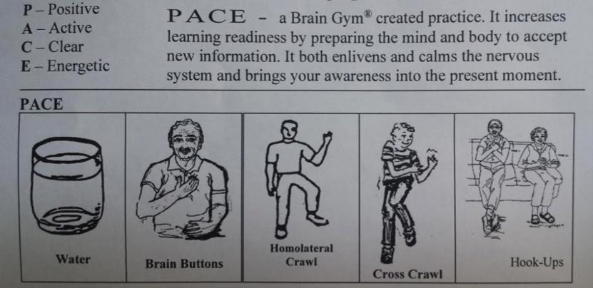 pace brain Gympace brain Gym